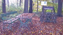 Herbstimpressionen_08.jpg