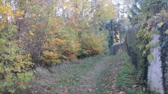 Herbstimpressionen_11.jpg