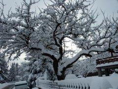 Winterimpressionen_08.jpg