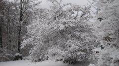 Winterimpressionen_09.JPG