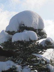 Winterimpressionen_12.JPG