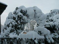 Winterimpressionen_13.jpg