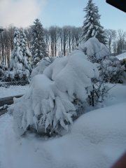 Winterimpressionen_15.jpg