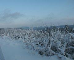 Winterimpressionen_16.JPG
