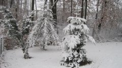 Winterimpressionen_17.JPG