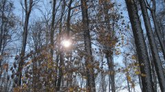Winterimpressionen_26.JPG