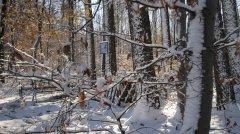 Winterimpressionen_27.JPG