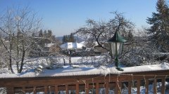 Winterimpressionen_31.JPG