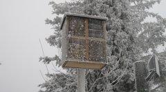 Winterimpressionen_32.JPG